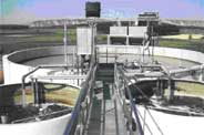 food-process-plant---amb-bi